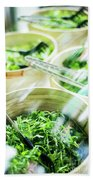 Salad Bar Buffet Fresh Mixed Lettuce Display Bath Towel