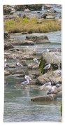 Seagulls On The Rocks Bath Towel