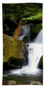 Smoky Mountain Falls Bath Towel