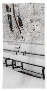 Snow In Central Park Nyc Bath Towel