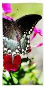 Spicebush Swallowtail Bath Towel