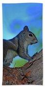 1- Squirrel Bath Towel