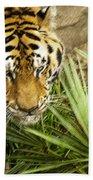 Stalking Tiger Bath Towel