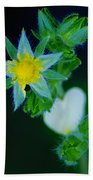 Starflower Bath Towel