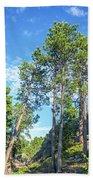 Tall Pine Trees Bath Towel