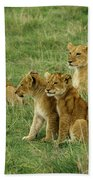 The Four Musketeers Bath Towel