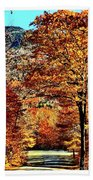 The Richness Of Autumn Treasures Hand Towel