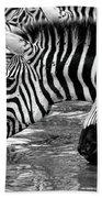 Thirsty Zebras Bath Towel