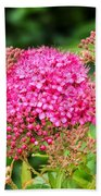 Tiny Pink Spirea Flowers Bath Towel