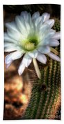 Torch Cactus - Echinopsis Candicans Bath Towel