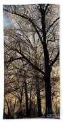 Trees In Ice Series Bath Towel