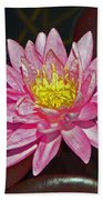 Water Lily Bath Towel