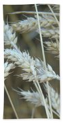 Wheats  Bath Towel
