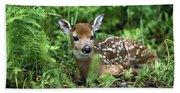 White-tailed Deer Odocoileus Bath Towel