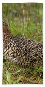 Willow Ptarmigan Hand Towel