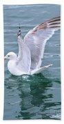 Wings Bath Towel