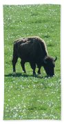 Wisconsin Buffalo Bath Towel