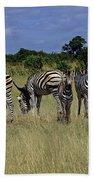 Zebra Group Bath Towel