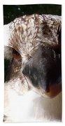 Australia - Kookaburra Up Close Bath Towel