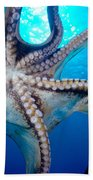 Hawaii, Day Octopus Bath Towel