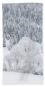 Winter Landscapes Bath Towel