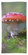 Mushrooms Bath Towel
