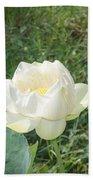 White Lotus Flower Flower Lotus Nature Summer Green Plant Blossom Asian Bath Towel