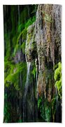 Gormon Falls Colorado Bend State Park.  Bath Towel