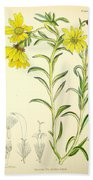 Illustrations Of The Flowering Plants And Ferns Of The Falkland Islands Bath Towel