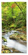 1266 Great Smoky Mountain National Park Bath Towel