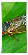 17 Year Periodical Cicada Bath Towel