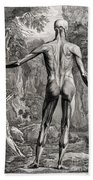 18th Century Anatomical Engraving Bath Towel
