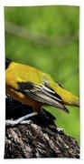 Audubon Oriole Bath Towel