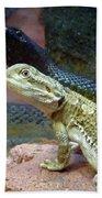 Australia - The Taipan Snake Bath Towel