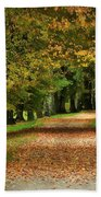 Autumn Park Bath Towel