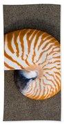 Bellybutton Nautilus - Nautilus Macromphalus Bath Towel