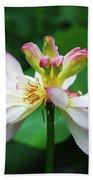 Blossoming Lotus Flower Closeup Bath Towel