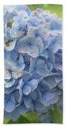 Blue Hydrangea At Rainy Garden In June, Japan Bath Towel