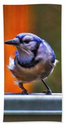 Bluejay Hand Towel