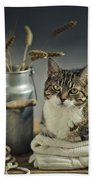 Cat Portrait Hand Towel