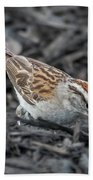 Chipping Sparrow Hand Towel