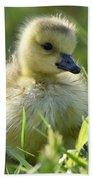 Cute Baby Goose Bath Towel