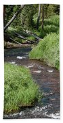 Gibbon River Hand Towel by Frank Madia