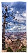 Grand Canyon National Park - South Rim Bath Towel