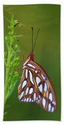 Gulf Fritillary Butterfly Hand Towel