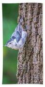 Huthatch Bird  Nut Pecker In The Wild On A Tree Bath Towel