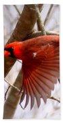 Img_0001 - Northern Cardinal Bath Towel
