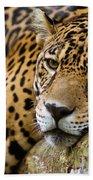 Jaguar Bath Towel