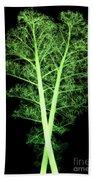 Kale, Brassica Oleracea, X-ray Bath Towel