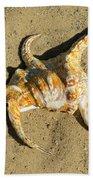 Lambis Arthritica Spider Conch Bath Towel